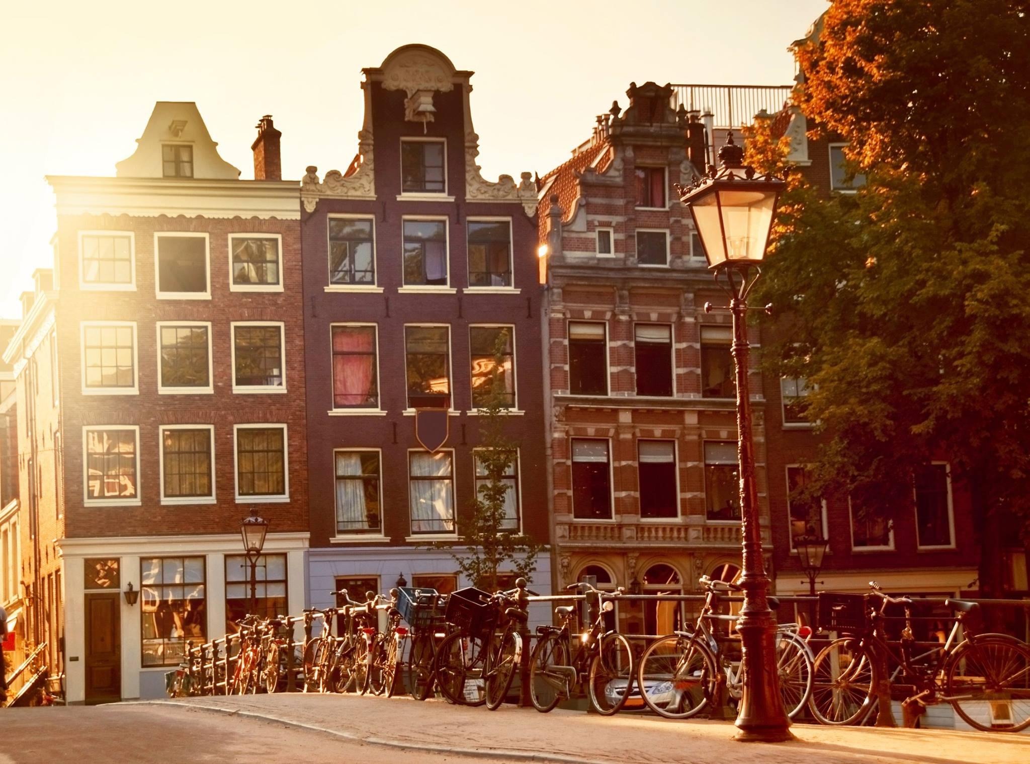 More articles in Dutch