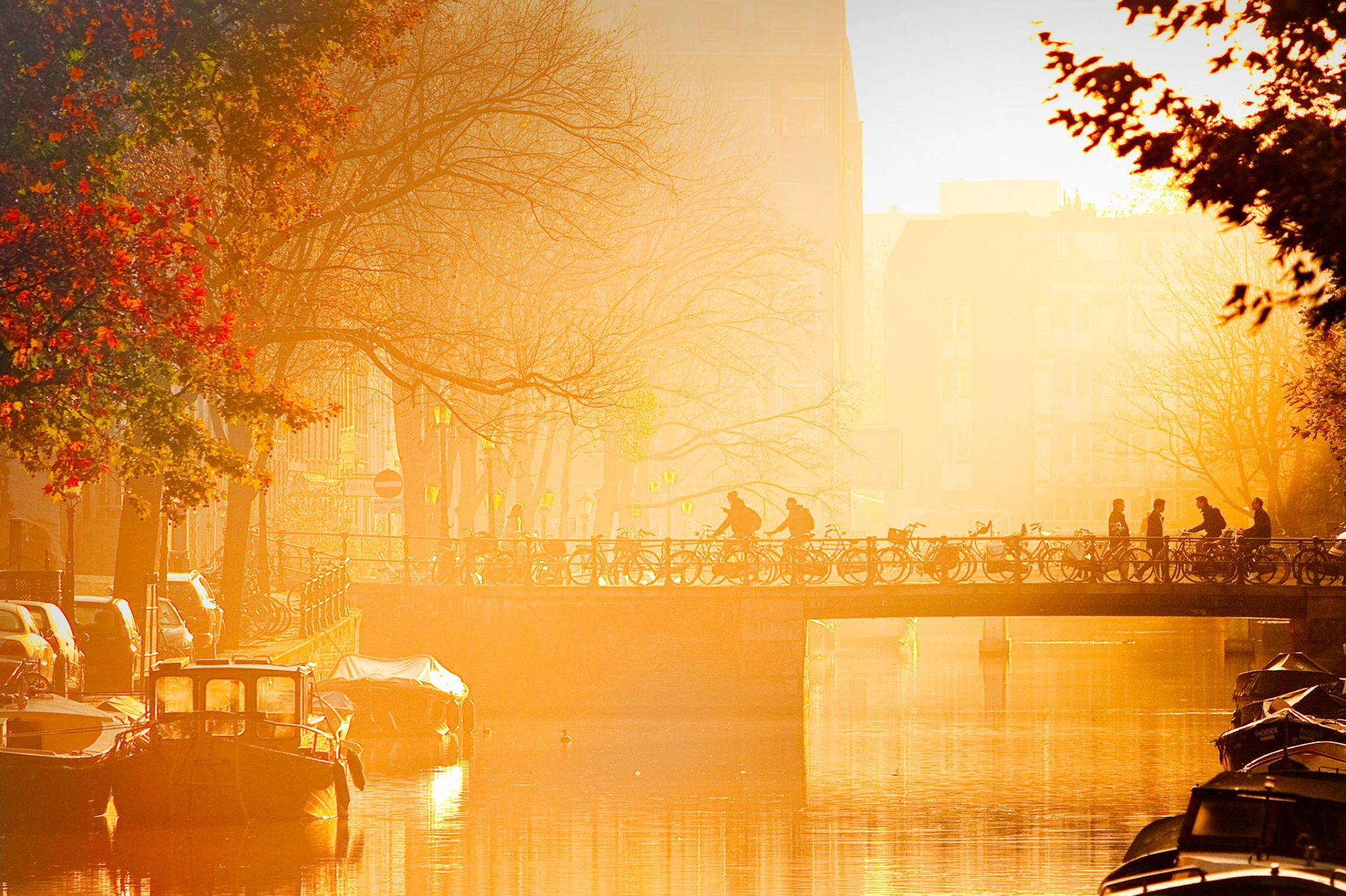 Amsterdam Becomes Attractive Hotspot for Startups